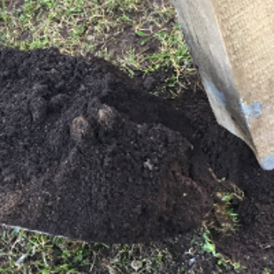 Fill and tam around the post with soil or gravel