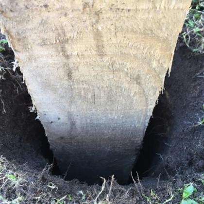 Fixera stolpen eller pålen i hålet
